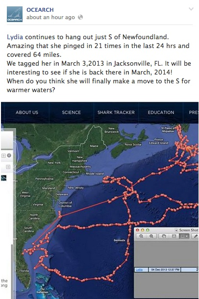 Lots Of Activity Off Of Cape Cod This Past Week Follow