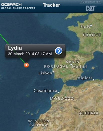 Lydia has traveled more than 21,175 miles within 1 year!